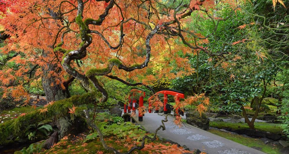 The Butchart Gardens Victoria Canada Japanese Garden