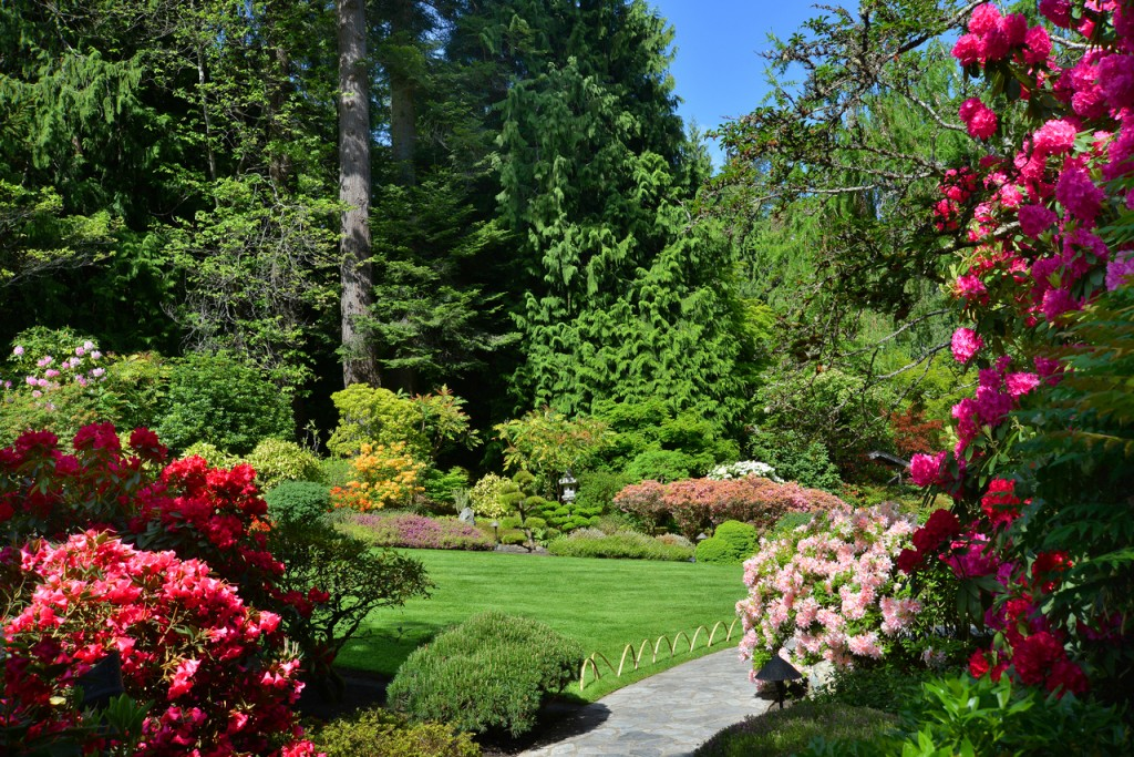 What\'s in bloom now? Garden updates May 4-11 - The Butchart Gardens