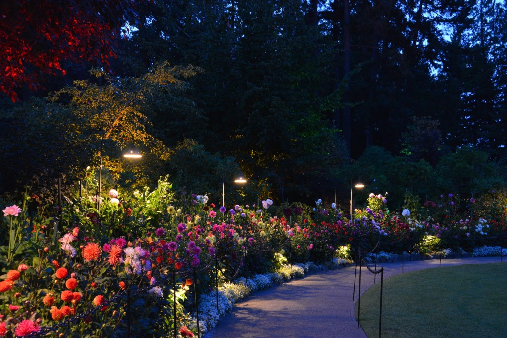 Night Illuminations at The Butchart Gardens