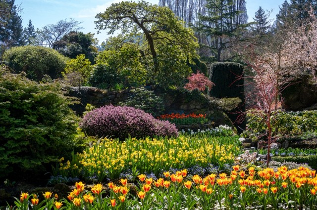 The Butchart Gardens Over 100 Years In Bloom Victoria Canada